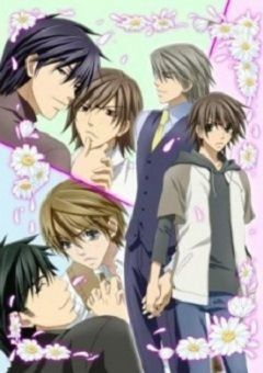 Junjou Romantica English Subbed